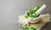 천연 유기농 화장품 '코스모스' 인증 급증