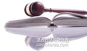 법원, 임블리 인스타그램 안티계정 삭제 가처분 신청 각하