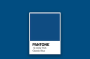 [EU 리포트] 팬톤, 2020년 올해의 컬러는?