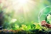 [일본 리포트] 식물유래 '풀러렌' 유럽 '2020 BSB 이노베이션 어워드' 은상 수상