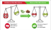 [최신연구] 'MC-EQ Micro', Microbiome 밸런스 조절 '피부 면역력' 강화